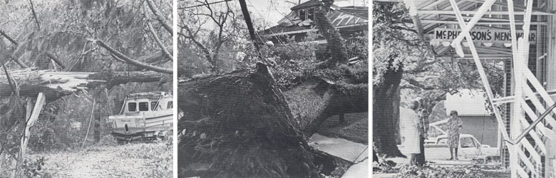 Read about Hurricane Frederic (1979)