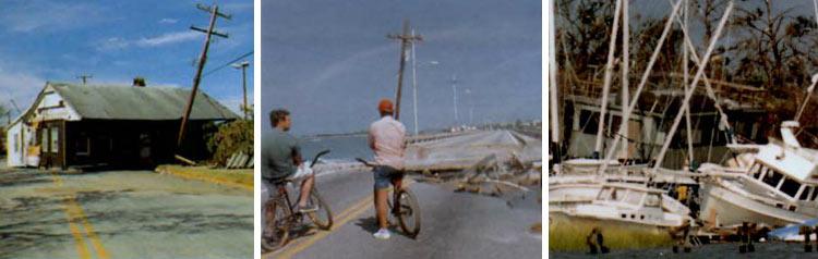 Read about Hurricane Hugo (1989)