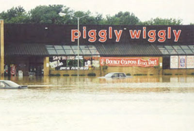 Piggly Wiggly on Rocky Creek Road, Macon GA